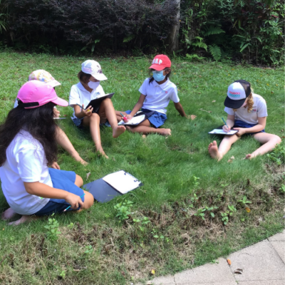 Grade 3 Students Take Action to Protect the Climate and Life on Land